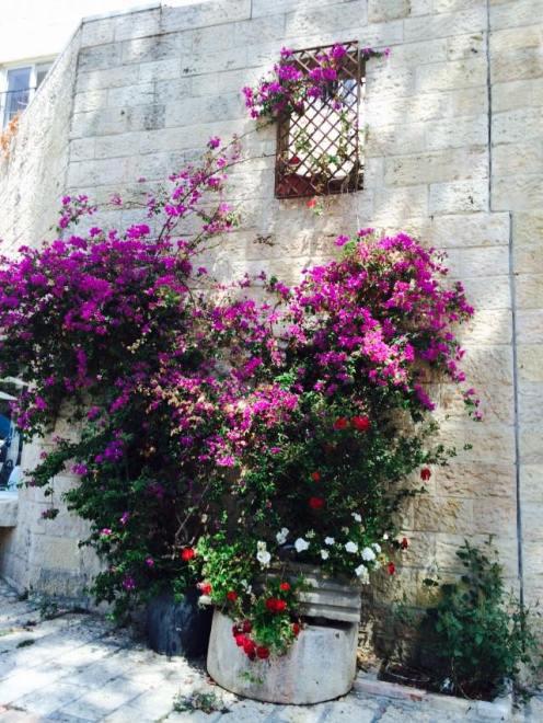 jerusalemflowers